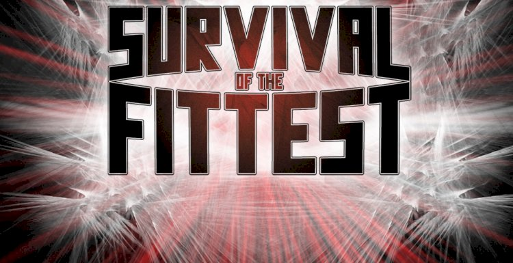 ROH Survival Of The Fittest Bracket Has Been Confirmed, Set To Start In Two Weeks